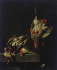a partridge and other game birds on a marble ledge by jan vonck