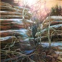 winter morning by steven bagnell