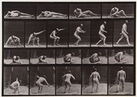 arising from the ground and walking off, plate 258 (from animal locomotion) by eadweard muybridge