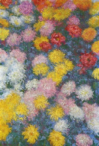 chrysanthème by claude monet