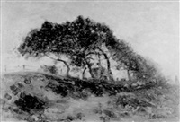 le grand arbre by jean-alexis achard