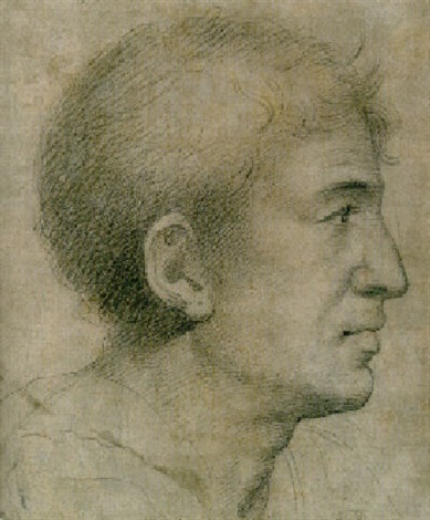 the head of a man, seen in profile by giuliano bugiardini