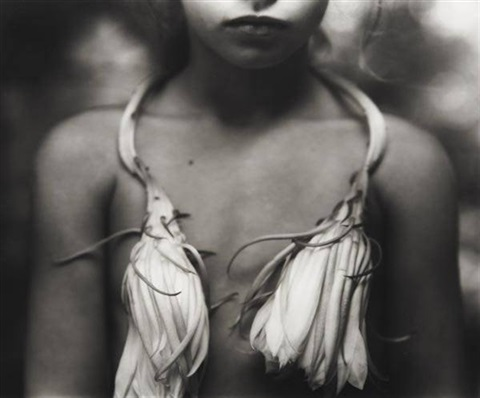 night blooming cereus by sally mann