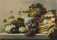 black and white grapes, partly in a wicker basket, all on a stone ledge by roelof koets the elder