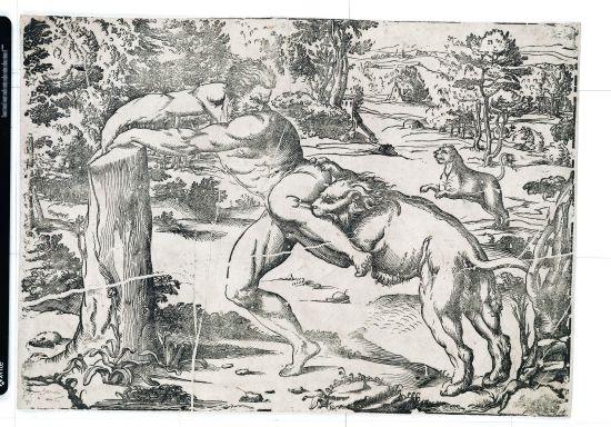 milone da crotone after titian by niccolo boldrini