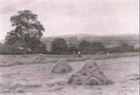 haymaking by wilmot pilsbury