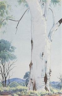 untitled (central australian landscape with gumtree) by albert namatjira