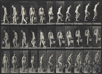 woman carrying a bucket (from animal locomotion, plate 102) by eadweard muybridge