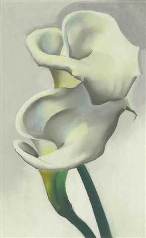 two calla lilies together by georgia okeeffe