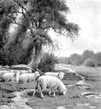 grazing sheep, mid-day by charles grant davidson