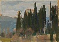 cypresses by jan stanislawski