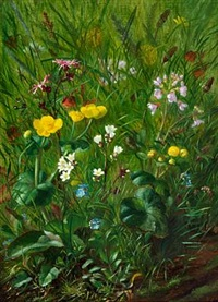 forest floor with summer flowers by alfrida baadsgaard
