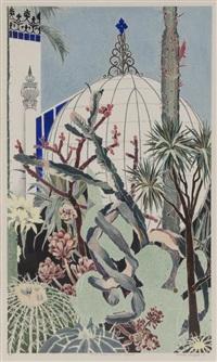 cactii, botanic gardens adelaide by cressida campbell