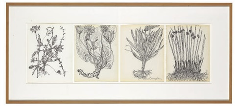untitled quartet all pages plants and roots 4 works by merce cunningham