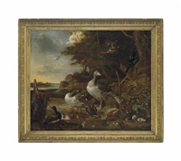 a wooded landscape with geese, mallard ducks, a teal and other ducks with ducklings and a magpie by a pond, a lake beyond by melchior de hondecoeter