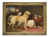 golden retrievers and a terrier by john glass
