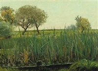 meadow by laurits andersen ring