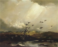 light in the dale, widgeons rising from a pool by vernon ward