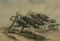 pines in the dunes by jan (johannes leonardus) kagie