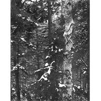 untitled (group of 10) by william clift