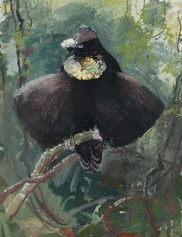 exotischer vogel by ottmar f von fuehrer