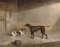 favourite hounds by george jackson