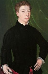 ritratto di un giovanotto by agnolo bronzino