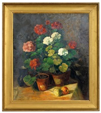 stillleben mit pelargonienstöcken by robert voit