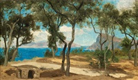 skogsdunge, italienska kusten by olof arborelius