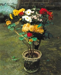potted geraniums with vase of chrysanthemums by jack cudworth