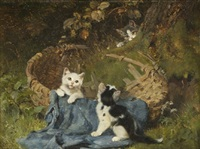 kittens at play by julius adam iii