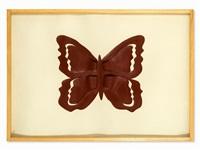 farfalla by mario ceroli