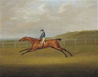 comrade portant les couleurs de lansdale sur un champ de course by john nost sartorius