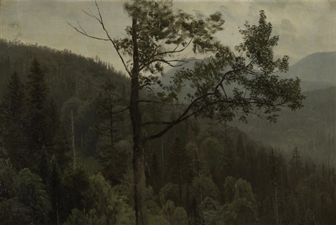 tree covered mountains by albert bierstadt