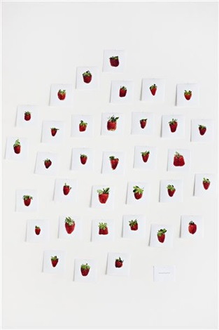 one pound strawberries 34 works by hans peter feldmann