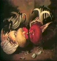 two cockerels by michiel vervoort