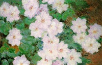 clematites by claude monet