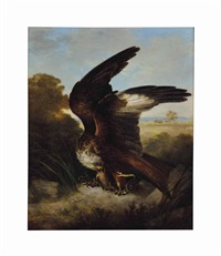 a snake in the talons of an eagle by sir edwin henry landseer