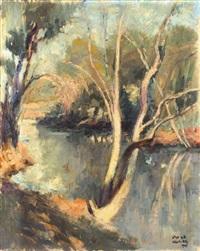 yarkon river by zvi adler
