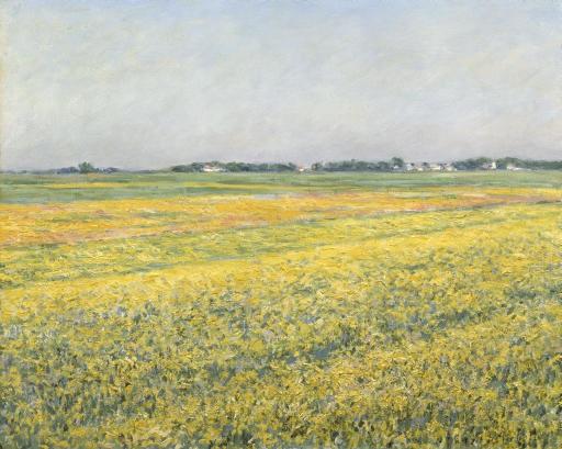 la plaine de gennevilliers champs jaunes by gustave caillebotte