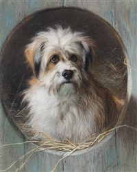 a terrier looking out of his kennel by thomas william earl
