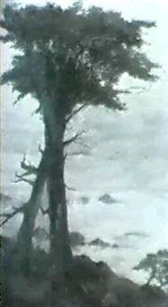 solitude, cypess de montery by anna elisabeth klumpke