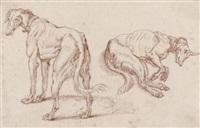 deux études d'un lévrier (study) by sinibaldo scorza
