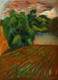 landscape,co. kilkenny by brian bourke