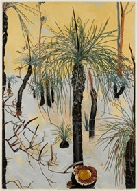 xanthorrhoea by cressida campbell