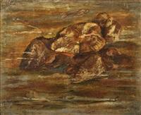 fósiles marinos by francisco arias alvarez