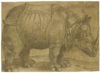 the rhinoceros by albrecht dürer