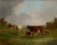 pâturage animé de vaches et moutons by andré cortes