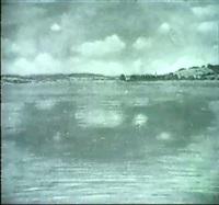seelandschaft unter bewolktem himmel by richard emil amsler