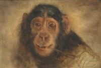 chimpanzee study by joseph schippers